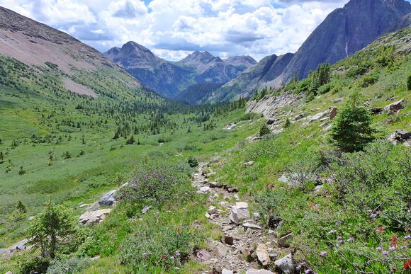 trail down Trinity Basin